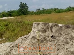 240 plots of farm land at Ilara Ekpe by st Augusti