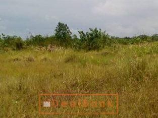 75 plots of land at Alasia by Lekki Gardens Estate