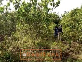 200 plots at Okin Mopo by Monastery Road Sangotedo